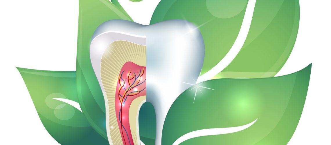 Natural Dentistry - dentists idaho falls